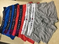 wholesale tommy boxer tommy underwear tommy underpant tommy knickers tommy brief