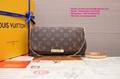 FÉLICIE POCHETTE Louis Vuitton Favorite LV Pochette Clutch LV Messenger Bag LV