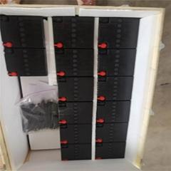 原裝進口德國陽光蓄電池A412/100A膠體蓄電池