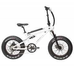26inch 36V 250W hot selling city hub motor commuting electric bicycle