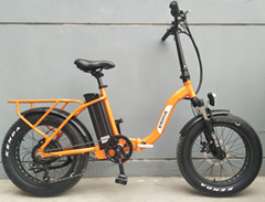 foldable electric bicycle 36v10ah 250w DC motor city ebike Lightweight electric