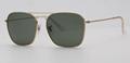OEM brand sunglases 3136 001 caravan golden/G15 lens new men sunglasses UV400