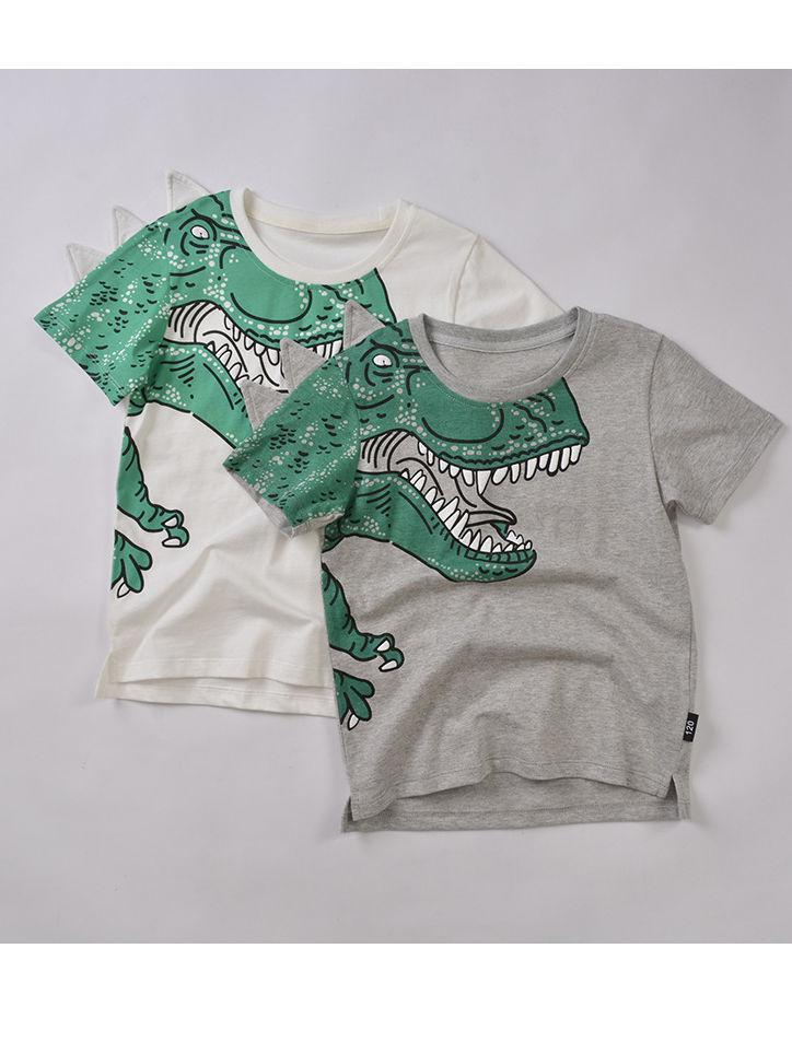 Toddler Big Boys Dinosaur T-shirt gray & white colors available