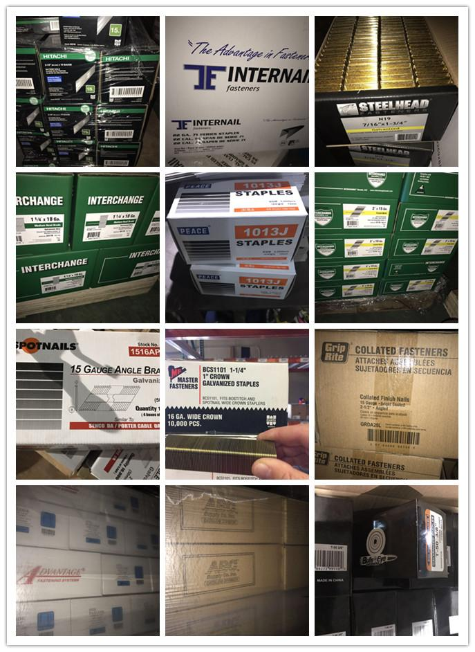 All kinds of Pneumatic staples china staple and brad 4
