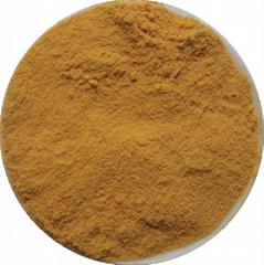 Siberian Ginseng Extarct Powder