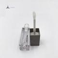 Cosmetic Packaging Lip Gloss Tube 4