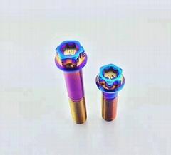 彩色螺丝钉