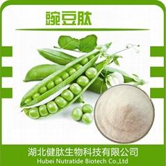 Natural Pisum Sativum Extract Pea Protein Peptide