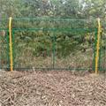 浸塑鐵絲網圍欄批發A養殖鐵絲網