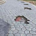 板岩冰裂紋 網貼石 黑色亂形碎拼 園林別墅 鋪地石 4