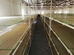 蠶具省力化蠶臺大蠶飼養設備快裝式蠶台養蠶用具蠶架蠶座蠶床