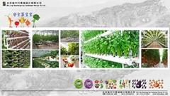特色农庄生态农庄规划设计