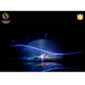 Lake Water Curtain Projection Laser Musical Dancing Fountain in India 3