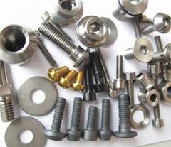 Titanium Pipe Fitting and Pipe Plugs
