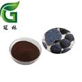 Black truffle extract
