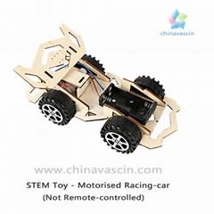 DIY Motorised Racing-Car NOT Remote-controlled