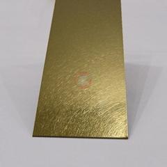 Gaobi And ribbed titanium, luxury stainless steel door panels