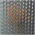 High ratio 316 mirror stainless steel laser ichthyoid pattern