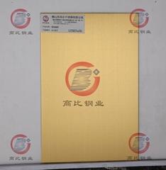 CS-2879 高比316不锈钢发纹镀锆金+抗指纹