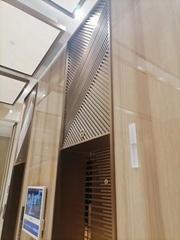 Elevator door 304 wire drawing rose gold stainless steel full welding screen