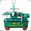 4DSB電動試壓泵 電動試壓泵