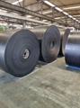 Mild Steel Steep Angle Conveyor Belts with good quality and best price