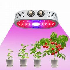 1100W Full Spectrum COB Indoor Hydroponics Plants LED Grow Lights for Indoor