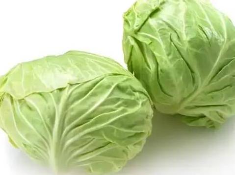 生鮮蔬菜宏鴻一站式配送 1