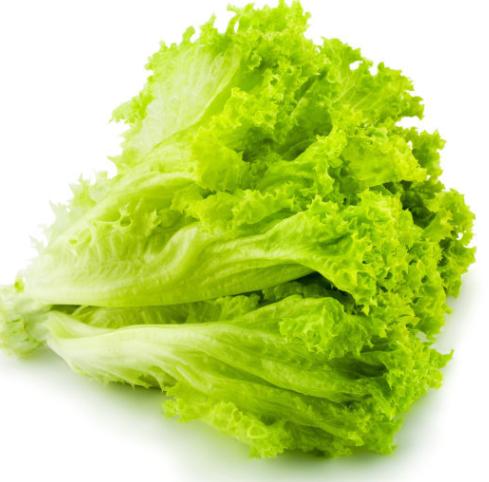 供應蔬菜  飯堂送菜 1