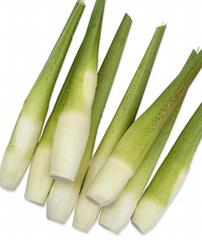 学校蔬菜配送  生鲜配送