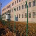 双边丝护栏网园林防护网厂家直供江苏淮安 1