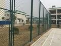 体育场围网 3