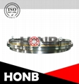 China YRT table bearings factory HONB