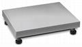 德国科恩KERN KXP-V20平台秤