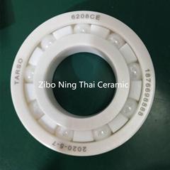 Ceramic Ball Bearing Used In Chemical Machine