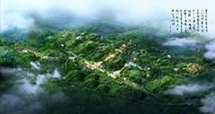 南京鸟瞰图设计
