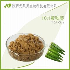 黃秋葵20:1  現貨供應免費拿樣 羊角豆提取物 黃秋葵提取物