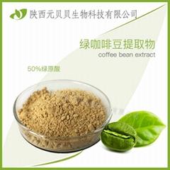 绿咖啡豆提取物粉