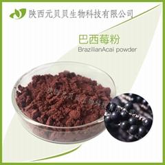 巴西莓粉  巴西莓萃取物  花青素廠家直供 巴西莓果粉