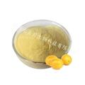 金桔汁粉 速溶粉特推产品喷雾干