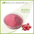 蔓越莓汁粉 口感纯正固体饮料