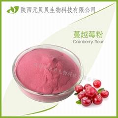 蔓越莓汁粉 口感純正固體飲料 蔓越莓提取物 蔓越莓粉