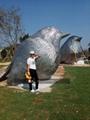 不锈钢鸽子雕塑不锈钢动物手工锻造雕塑 3