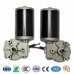 12V 24V 300 Watt Brush DC Motor Gear Box High Torque Micro Worm Gear Motor for A