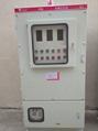正壓防爆配電櫃 5