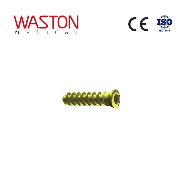 Vertebral screw