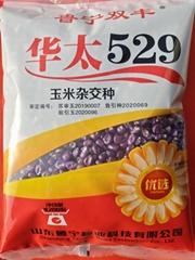 華太529