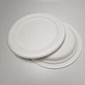 """8"""" compostable plates Circular"""