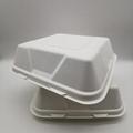 9 inch Biodegradable Bagasse Hamburger Box Food Packaging Clamshell Take away F 4