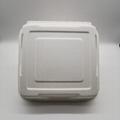 9 inch Biodegradable Bagasse Hamburger Box Food Packaging Clamshell Take away F 5